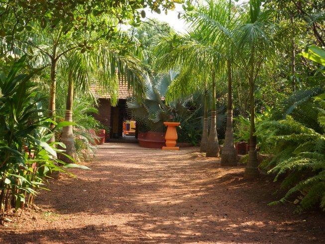 8 Days Meditation and Yoga Retreat in India