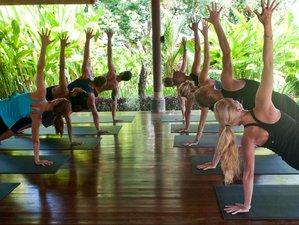 8 jours en stage de yoga à Bali, Indonésie
