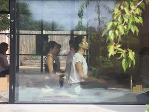 3 Day Inner Glow: Vinyasa, Yin Yoga, and Meditation Retreat in Canterbury