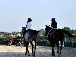 4 Days Beginner Lessons with Recreational Horseback Riding in Michałowice, Poland