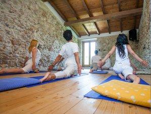 5 Day Hatha and Vinyasa Flow Online Yoga Course