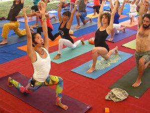 21-Daagse 200-urige Yoga Docentenopleiding in Piedmont, Italië