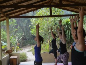 8 Days Voluntourism and Karma Yoga Holiday in Paksong, Thailand