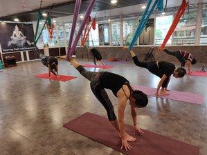 7 días de profesorado de yoga aéreo de 50 horas en Rishikesh, India