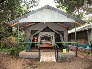 6 días en un económico safari por lo mejor de Kenia: Masái Mara, Nakuru, Amboseli