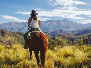 6 Day Cross of the Andes Horse Riding Holiday in Argentina
