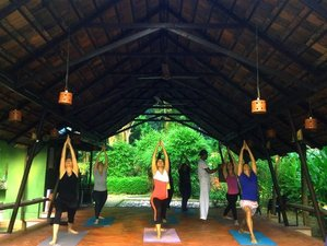 "7 Days ""Happy Life"" Yoga and Meditation Retreat In India"