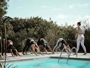 11 Day Surf and Yoga Tropical Package: The Vegan Surf 'n' Yoga Retreat in Fuerteventura