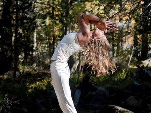 4-Daagse Eindejaars Meditatie en Yoga Retreat in Huizen, Nederland