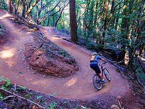 6 Day Single Track Bike Tours in California