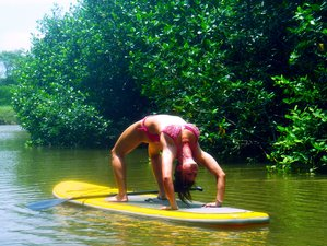 8-Daagse 40-urige SUP Yoga Docententraining in Costa Rica