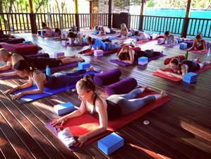 9 Days 50-Hour Yin Yoga Teacher Training in Nusa Lembongan