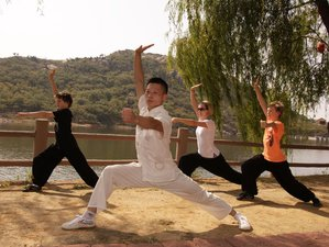 1 Year Learn Shaolin Kung Fu in China at Tianmeng