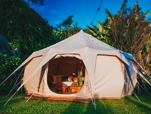 Lodging: Luxury Tented Camps