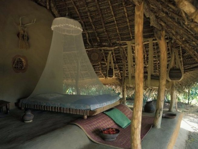 15 Days Iyengar Yoga Retreat in Dambulla, Sri Lanka