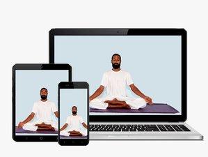 6 Wochen 100-Stunden Online Vinyasa Yogalehrer Ausbildung mit Pranayama, Meditation und Ayurveda