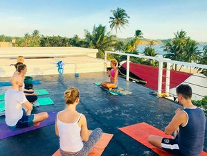 8 Day TS2 Yoga and Surf Camp in Weligama, Southern Province