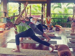 8 jours en stage de yoga et méditation à Ubud, Indonésie