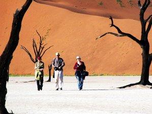 9 días de safari por el sur de Namibia