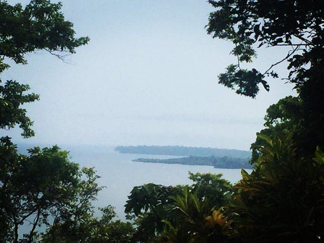 2 Days Jungle Night Experience and Cooking Holiday in Puerto Viejo, Costa Rica