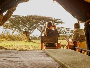 5 Day Private Mid Range Lodge Safari Tour in Tanzania