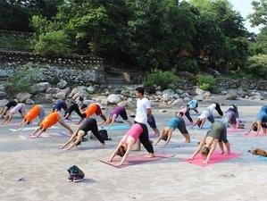 28 Day 300-Hour Soul-Stirring Yoga Teacher Training in Kerala