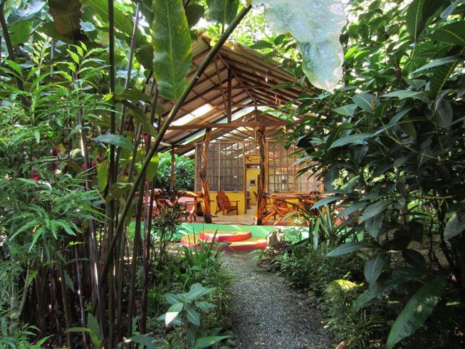 8 Days Yoga and Detox Retreat in Costa Rica