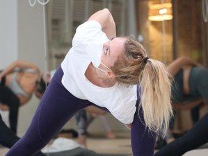 Profesorado de yoga Hatha Vinyasa de 200 horas en línea