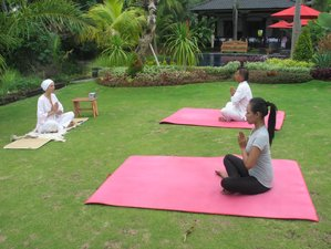 7 Days Path to Happiness Meditation and Yoga Holiday in Buleleng Regency, Bali