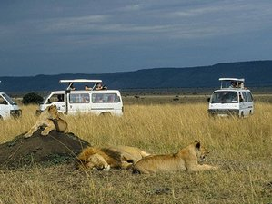 5 Days Best of Kenya Safari