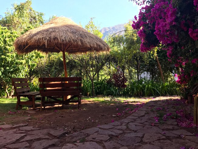 7 Days Back to Wellness Yoga Retreat in the Andes, Peru