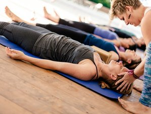 22 Days 200hr Yoga Alliance Teacher Training at Vida Asana in Costa Rica