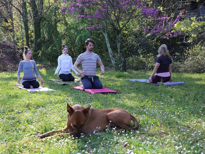 8 Days Divine Happiness and Female Balance Yoga Retreat in Croatia