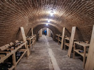 3 Day Outstanding Wine Tour in Moravia, Czech Republic