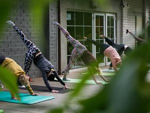5 Day Reconnect and Nourish Your Soul Retreat with Yoga and Meditation in Hippolytushoef