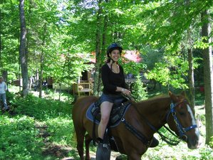 3 Day Horseback Trail Riding Holiday in Algonquin Park, Ontario, Canada