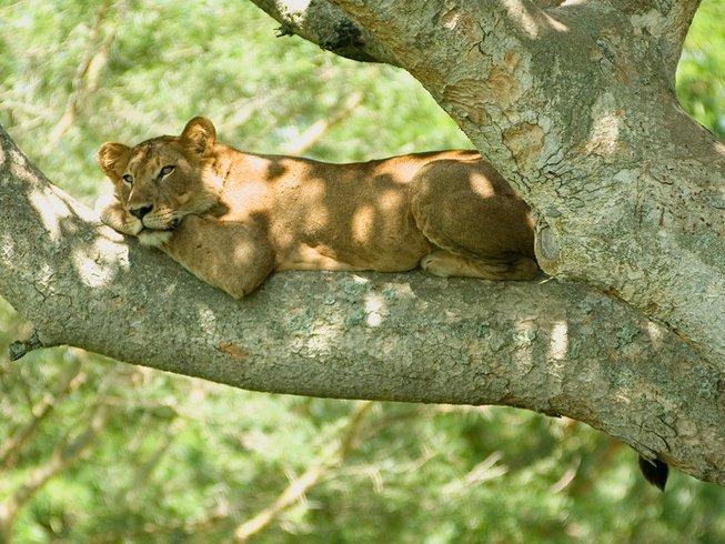 6 Days African Safari and National Park Tour in Uganda