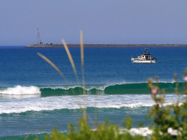 7 Days Surfing and Yoga Retreat Portugal in Milfontes