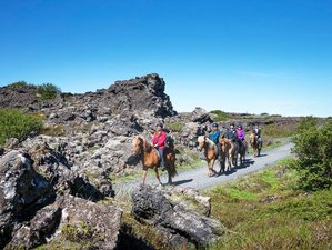 7 Days The Kings Trail across Western Highlands Horse Riding Holiday in Iceland