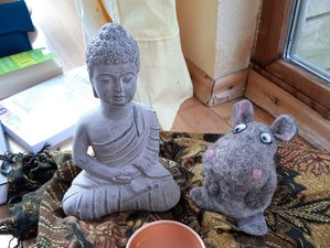 3 Day Yoga, Breathing, Meditation, and Music Retreat in Laterns, Vorarlberg