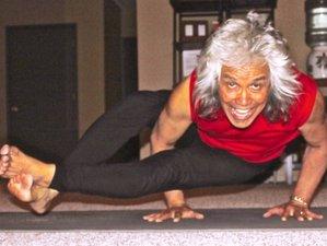 3 jours en stage de yoga, vin et chocolat en Californie, États-Unis