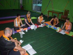 26 Day 200-Hour Multistyle Yoga Teacher Training in Rishikesh