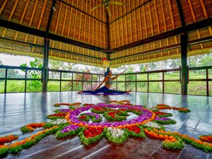 8 Days Healing and Yoga Holiday in Ubud, Bali