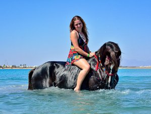 6 Days Red Sea Mini Break Horse Riding Holiday in Hurghada, Egypt