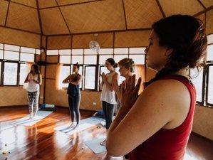 8 días de meditación, despertar de chakras y yoga en Chiang Mai, Tailandia