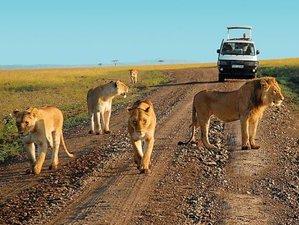 3 Days Great Wildebeest Migration Safari Maasai Mara, Kenya