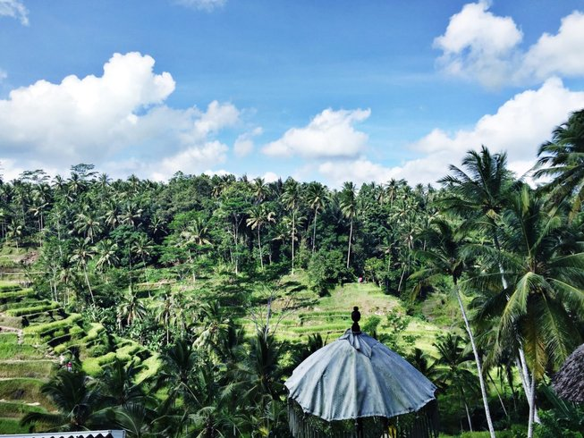 4 Days Wellness and Yoga Retreat in Bali, Indonesia