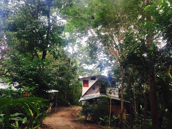 21 Tage Spanisch und Yoga Urlaub in Puntarenas, Costa Rica