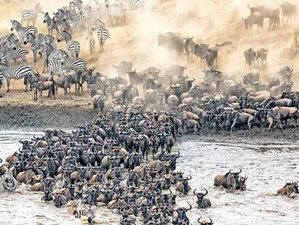 10 Days Decagon Safari in Tanzania with Great Wildebeest Migration