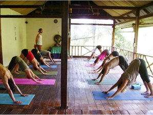 7-Daagse Detox en Yoga Retreat in Koh Phangan, Thailand